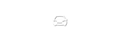 Mietwagen Icon